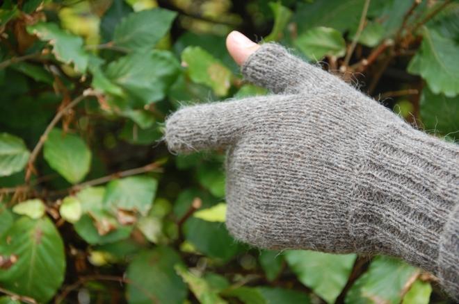 Rifleman's gloves 2014-09-30 002